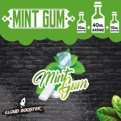Mint Gum 60 Ml - Cloud...