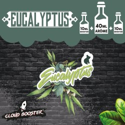Eucalyptus 60 Ml - Cloud...
